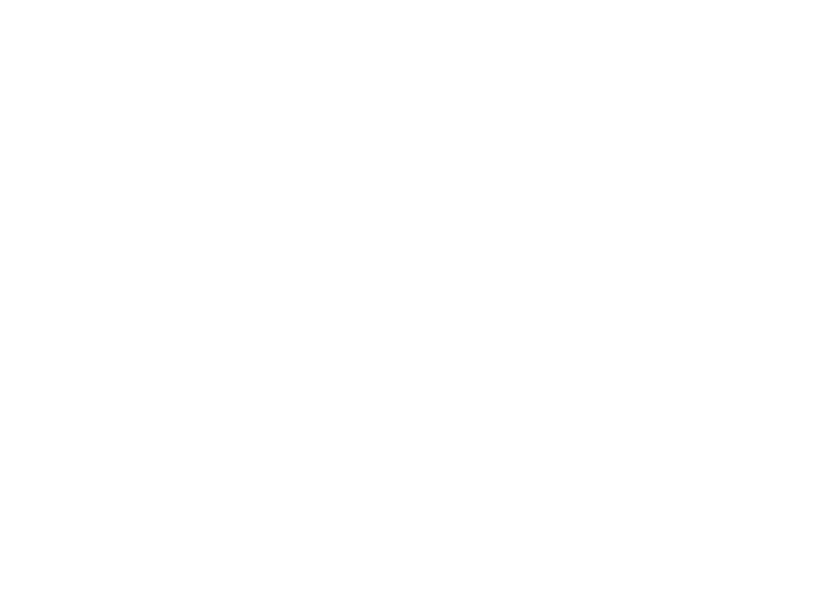 Gallagher Arch